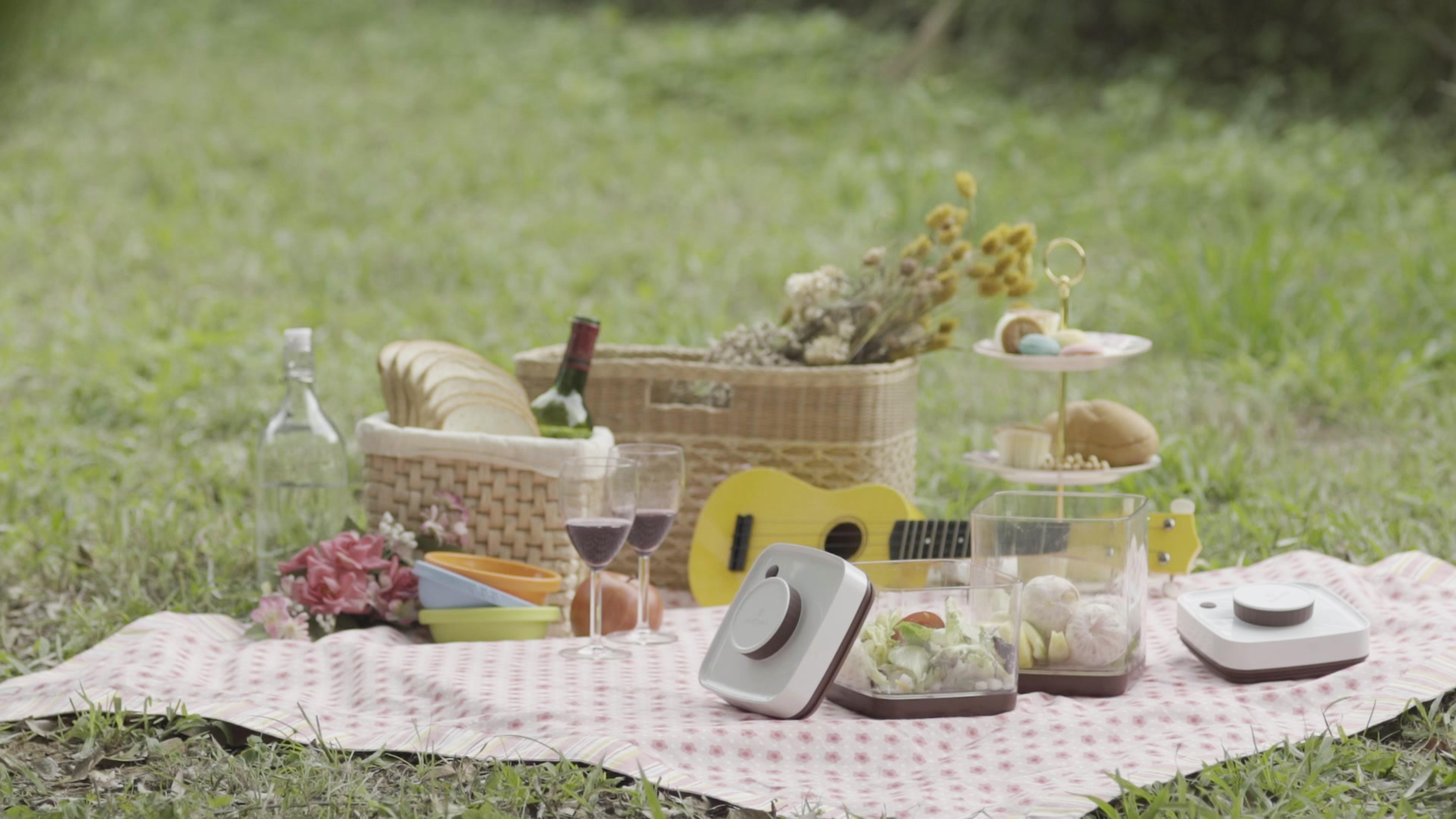 Ankomn Savior - picnic